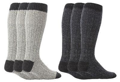 Sock Snob 3 paia uomo lunghi lunghe caldo calzini//calze lana in grigio e marrone