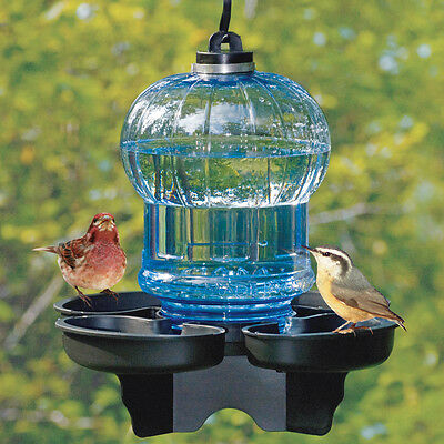 Bird Waterer and Birdbath
