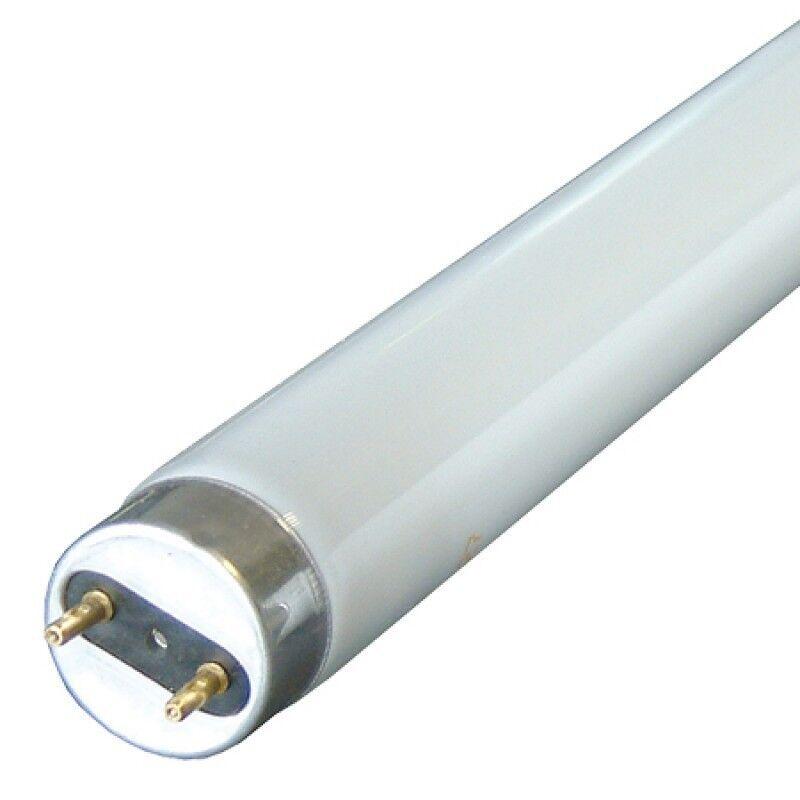 100 X 2FT 18W 18WATT FLUORESCENT TUBES Weiß ENERGY SAVING 840 COOL Weiß