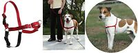 Easy Walk Dog Harness - 3 Colors - 5 Sizes - Easy To Fit & Easy To Use Walking