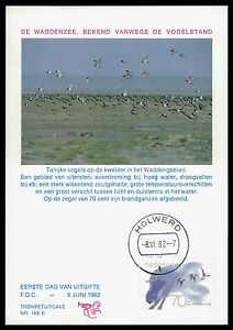 Glorious Niederlande Mk 1982 Fauna VÖgel Birds Maximumkarte Carte Maximum Card Mc Cm Bv94 Birds Animal Kingdom