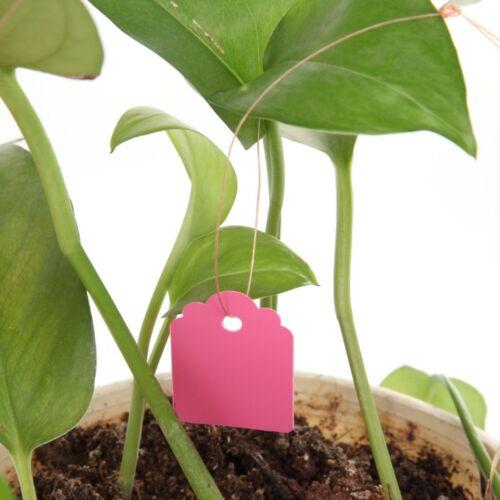 100pcs Map Ornaments PlasticTags Hanging Waterproof Gardening Plant Labels