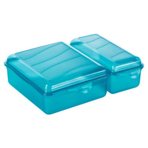 Rotho Lunch-Box Brotdose Vesperdose Brotbox Brotzeit Bento-Box Butterbrotdose