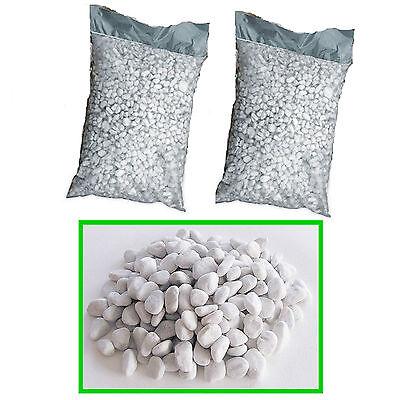 4 sacchi x 25 kg ciottoli di marmo bianco carrara sassi for Ciottoli bianchi