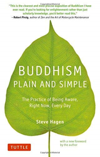 Hagen Steve-Buddhism Plain And Simple (US IMPORT) BOOK NEW