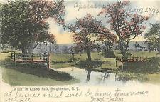 "BINGHAMTON NY ""IN CASINO PARK"" 1906 P/C"