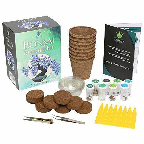 Complete Bonsai Tree Starter Kit w  Soil Discs   Seed Variety   Peat Pots & More
