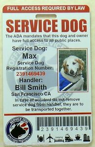 SERVICE-DOG-ID-CARD-BADGE-ASSISTANCE-ANIMAL-ADA-TAG-SERVICE-ANIMAL-0-R