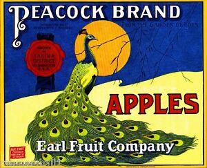 Yakima Washington State Peacock Bird Apple Fruit Crate Label Art Print