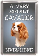 "Cavalier King Charles Spaniel Fridge Magnet ""A VERY SPOILT CAVALIER LIVES HERE"""