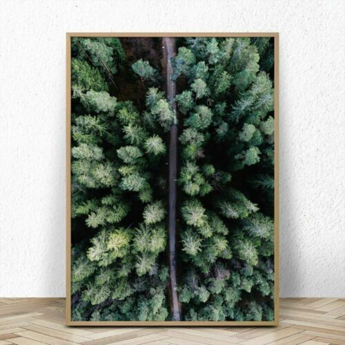 Picture Canvas Paintings Wall Decorative Posters For Home Living Room Forest Art