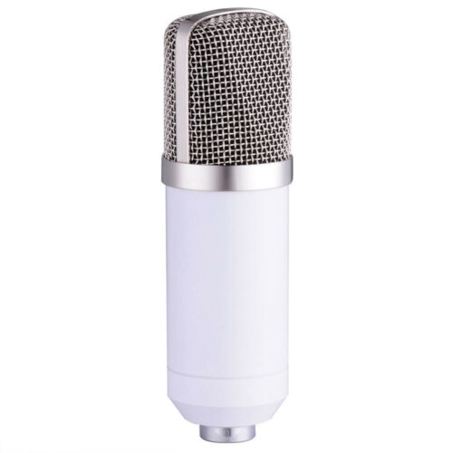 BM800 Condenser Microphone Kit White Mount Stand Pop Filter BM 800 Microphone
