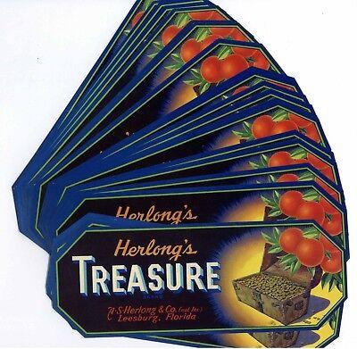 Leesburg Florida Herlong/'s Treasure Brand Orange Citrus Fruit Crate Label Print