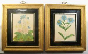 2-Blue-Flower-Prints-Yellow-Centers-Gold-Painted-Wooden-Framed-Black-O