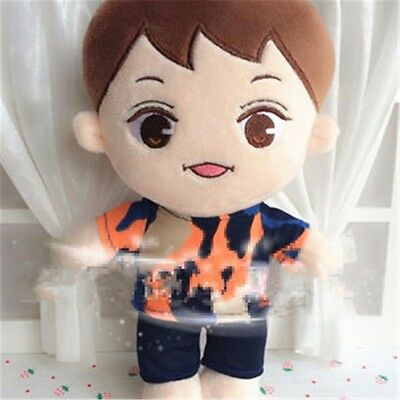 "KPOP EXO XOXO Planet#2 Camouflage ParkChanYeol 10"" Plush Toy Stuffed Doll"