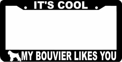 IT/'S COOL MY BOUVIER LIKES YOU DOG  License Plate Frame