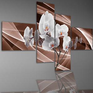 aufh ngfertig leinwand leinwandbilder bild bilder 6843m orchideen blumen bl ten ebay. Black Bedroom Furniture Sets. Home Design Ideas