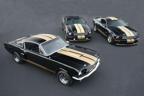 HERTZ 3 Cars 1966 /& 2006 Ford SHELBY GT 40 MIL Refrigerator Magnet