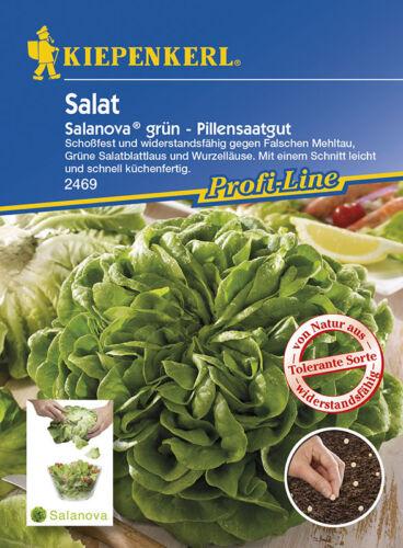 Salat Kopfsalat Salanova grün Descartes MHD 01//21 Pillensaat Kiepenkerl 2469