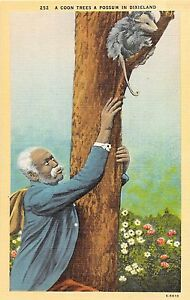 "C25/ Black Americana Postcard ""A Coon Trees a Possum in Dixieland"" Man 19"