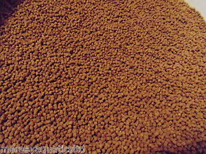 1000g-1KG-FISH-FOOD-FOR-PLECO-CATFISH-CORY-LOACH-SNAILS
