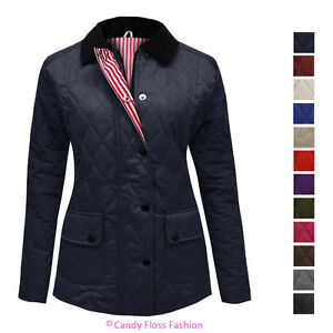 NEW-WOMENS-LADIES-QUILTED-PADDED-BUTTON-ZIP-JACKET-COAT-TOP-PLUS-SIZES-8-26
