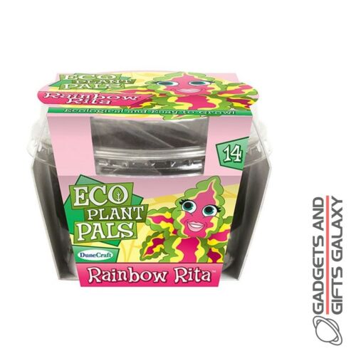 Développer Votre Propre Rainbow Rita Eco Plant Kids Childs toys cadeaux jeux gadgets