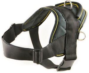 Dean-amp-Tyler-DT-Harness-Nylon-Dog-Harness-Heavy-Duty-yet-Lightweight