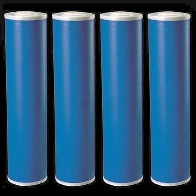 "4 Big Blue (GAC) Granular Activated Carbon Water Filters 4.5"" x  20"" Cartridges"