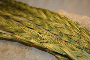 SWEETGRASS-Braid-5-Braids-Organic-Native-American-Smudge-Herb-24-27-034-Long