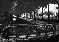 1956 TERME di TELESE il Viale del Cerro-Grandi Stabilimenti Balneari A.Minieri