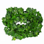 200cm-Ivy-Leaf-Garland-Green-Plant-Plastic-Vine-Foliage-Home-Garden-Decoration thumbnail 10