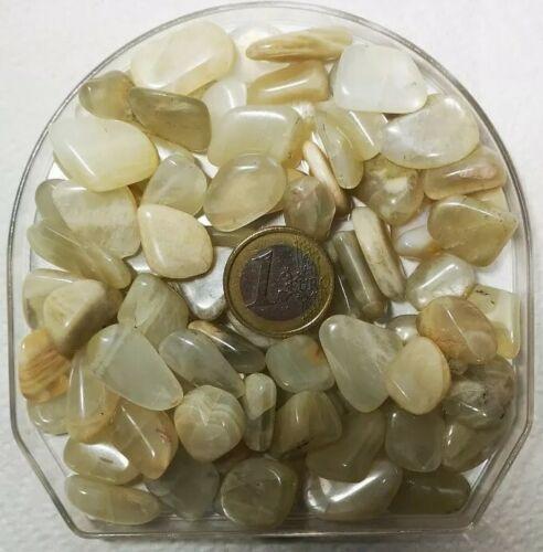 Pietra di Luna Adularia Burattata Cristallo Cristalloterapia Chakra bustine 20g