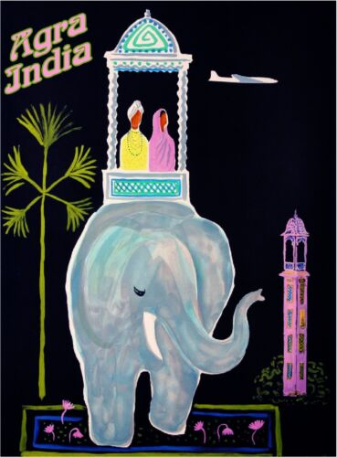 Agra India Airplane Elephant Vintage Travel Art Advertisement Poster