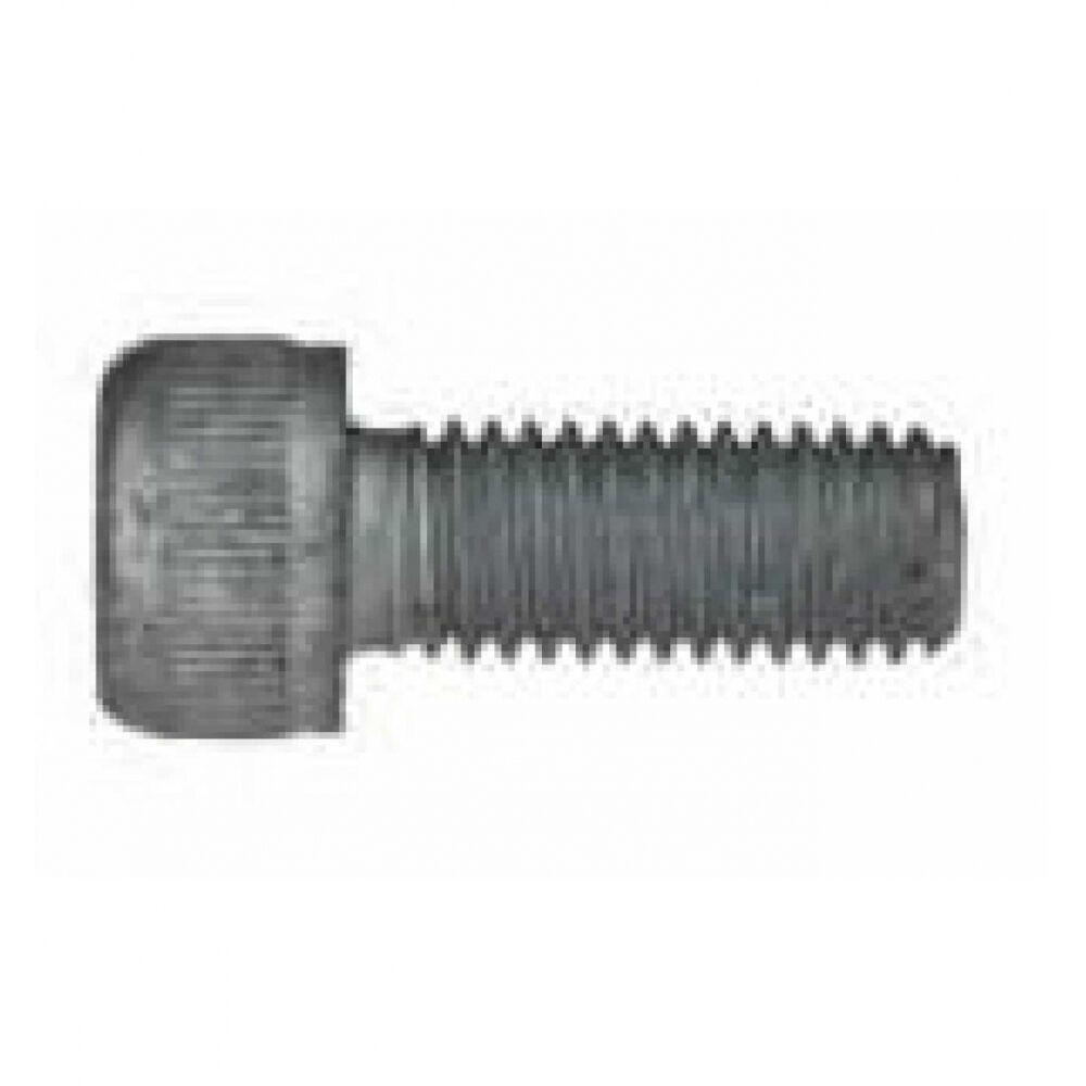 100x ISO 4762 Zylinderschraube mit Innensechskant. M 12 x 20. 12.9 zinklamellen