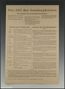 Plakat-Das-ABC-des-Gemuesegaertners-um-1946