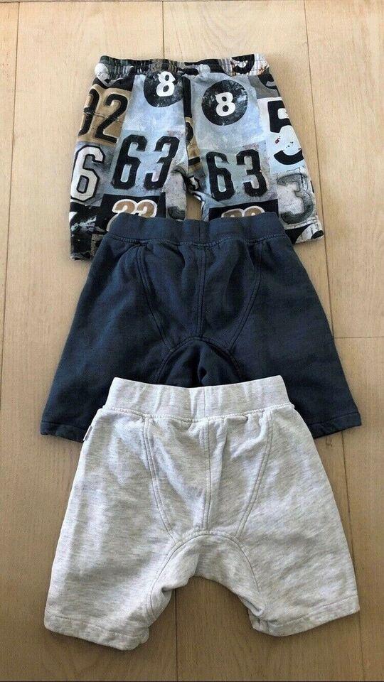 Shorts, Shorts, Molo