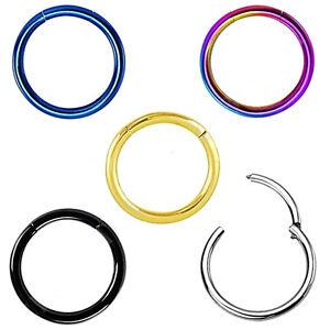 2x-Charm-Segment-Ring-Titan-Septum-Clicker-Piercing-Nasenlippen-Ohrringe-FB