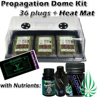 Hydroponics Seeding Cloning Dome Tray Lid With 36 Cells Plug Heat Mat Nutrients