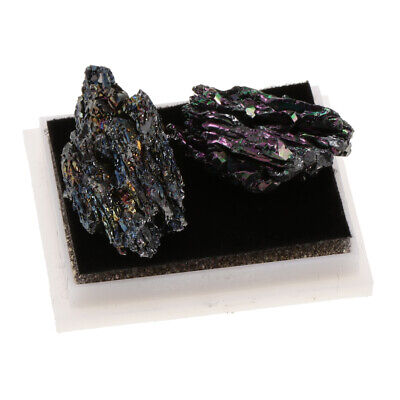 Black Quartz Kids Science Kit Rock and Mineral Collection in Clear Box