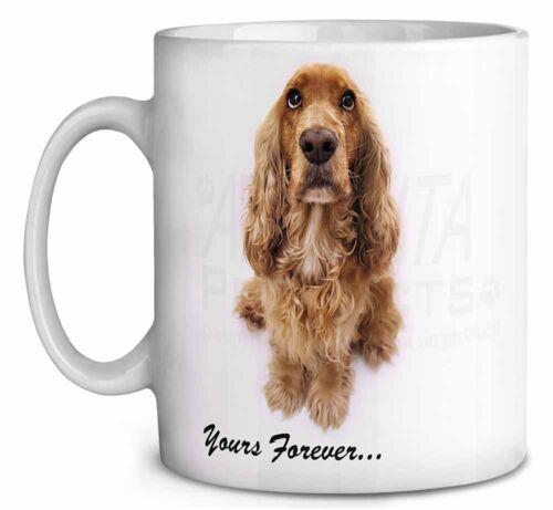 AD-SC22MG Cocker Spaniel Dog /'Yours Forever/' Coffee//Tea Mug Christmas Stocking