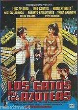 LOS GATOS DE LAS AZOTEAS