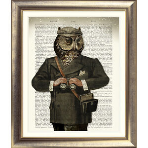 ART-PRINT-ON-ORIGINAL-ANTIQUE-BOOK-PAGE-OWL-Old-DICTIONARY-Picture-Bird-Animal