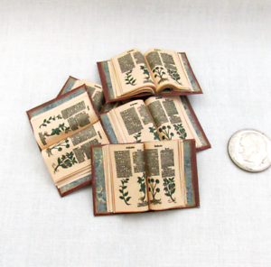 Open-Book-BOOK-OF-HERBS-Illustrated-Miniature-Dollhouse-1-12-Scale-Book-Latin