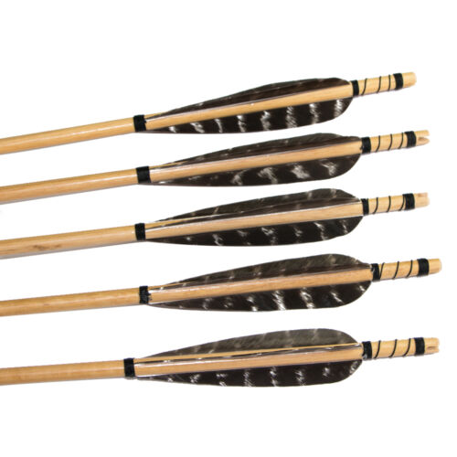 12pcs Archery Hunting Fletching Feather Wood Arrows Field Points Recurve Longbow