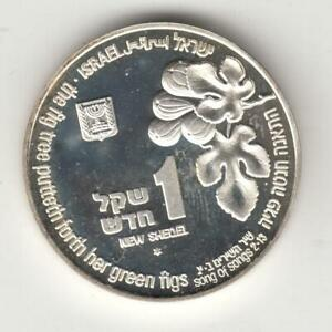 1996-Holy-Land-Wildlife-Nightingale-and-Fig-Tree-BU-Coin-1NIS-14-4g-Silver-2