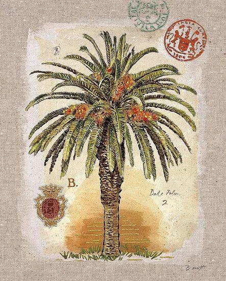 Chad Barrett    Linen Date Palm Tree COMPLETO - 40x50 Immagine Muro Immagine palme SHABBY d81d4e
