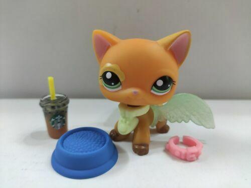 Littlest Pet Shop LPS#1643 orange cat blue eyes// 5pcs accessories