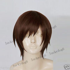 COS WIG Vocaloid2 Meiko Anime Cosplay Hair Wig Synthetic wig Free Shipping NEW