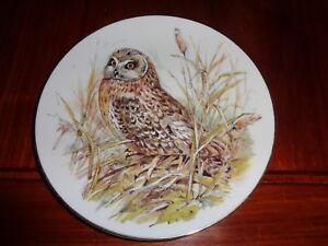 Un Named Collectors Plate THE SHORT EARED OWL - Swaffham, United Kingdom - Un Named Collectors Plate THE SHORT EARED OWL - Swaffham, United Kingdom